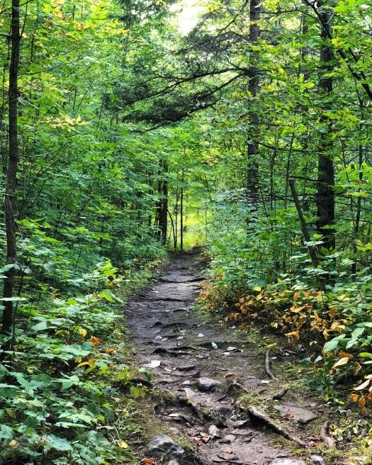 Balsam Lake Trail