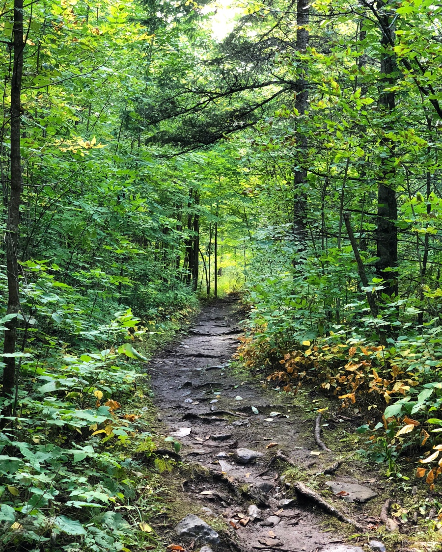 Balsam Lake Trail