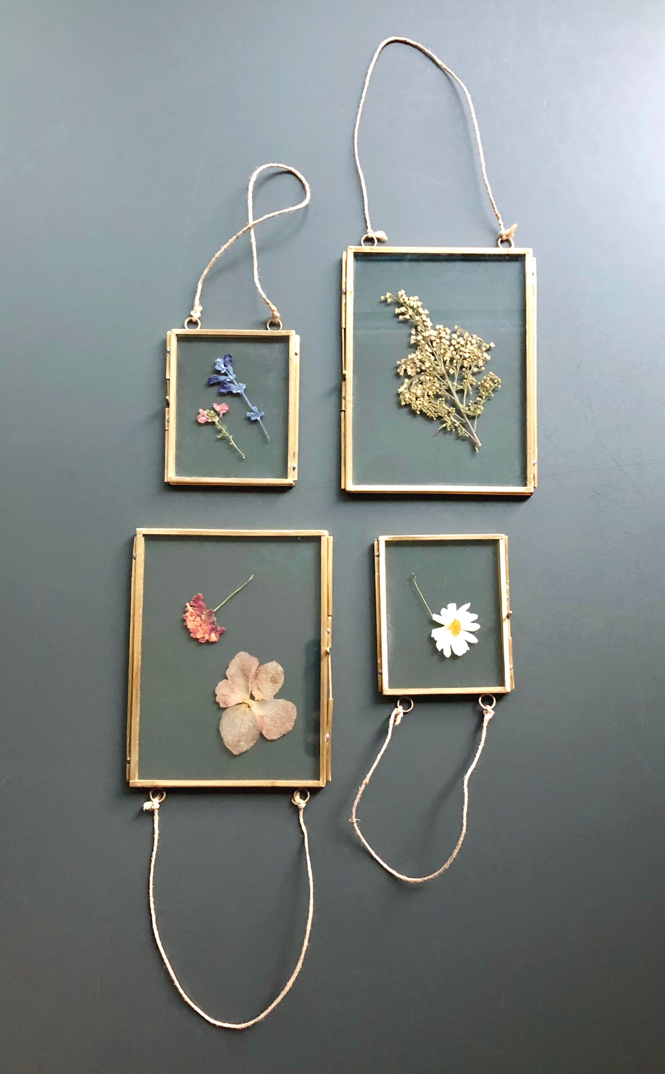 Pressed Flower Display
